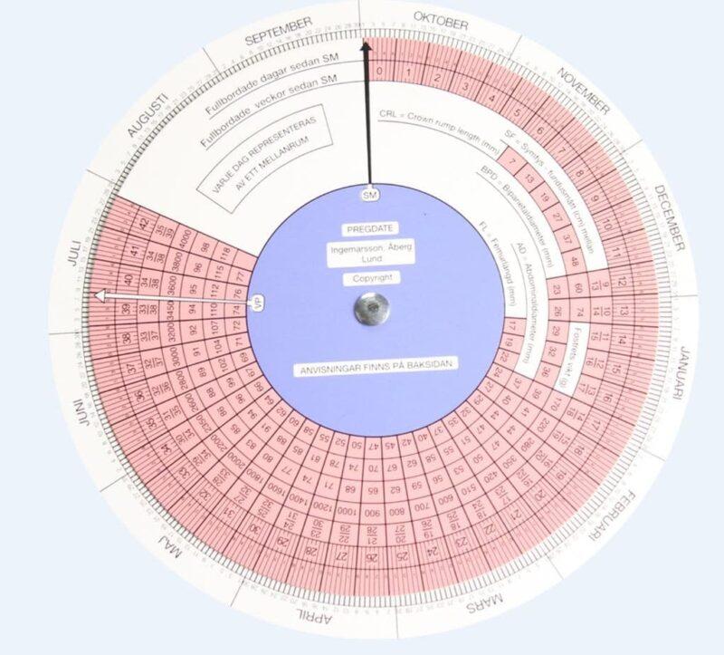 Graviditetssnurra Bordsmodell